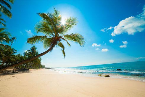 Der Strand am Meer